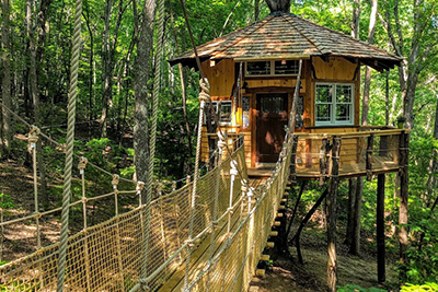 treehouse stamish castle dog friendly